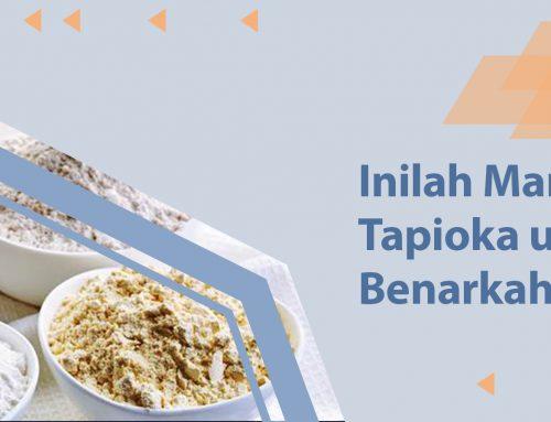 Inilah Manfaat Tepung Tapioka untuk Tubuh. Benarkah Lebih Sehat?